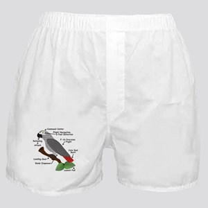 Anatomy of an African Grey Parrot Boxer Shorts