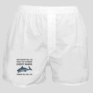 Sharks Will Kill You Boxer Shorts