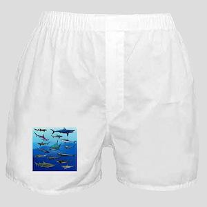 Shark Gathering Boxer Shorts