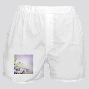 Flowers and Butterflies Boxer Shorts