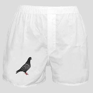Pigeon Boxer Shorts