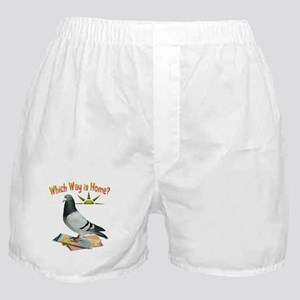 Which Way is Home? Fun Lost Pigeon Art Boxer Short