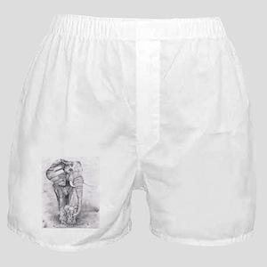 African Elephants Boxer Shorts