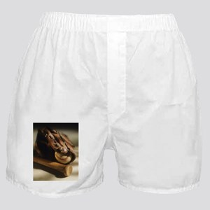 baseball glove Boxer Shorts