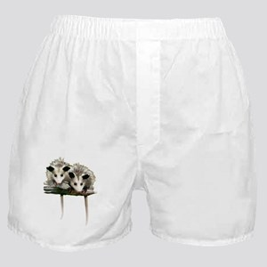 Baby Possums on a Branch Boxer Shorts