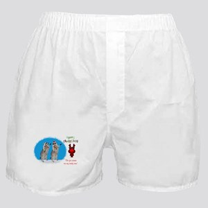 Christmas Boxer Shorts