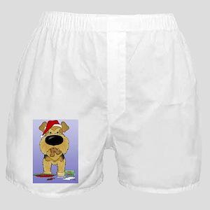 AiredaleBlue Boxer Shorts