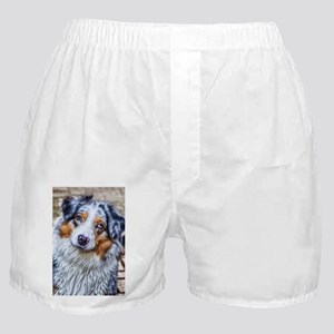 Australian Shepherd Boxer Shorts