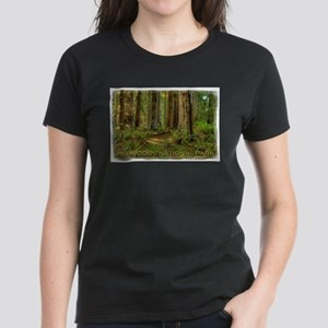 Redwood National Park Women's T-Shirt