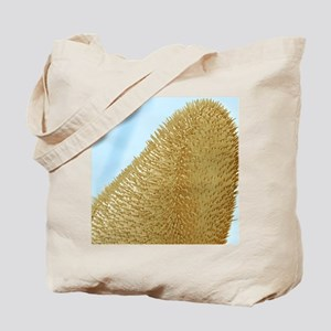 Bee antenna, SEM Tote Bag