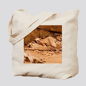 Kiva in Lower Grand Gulch Tote Bag