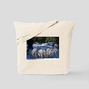 Shadow Fan Tote Bag