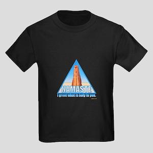 namaste15 T-Shirt