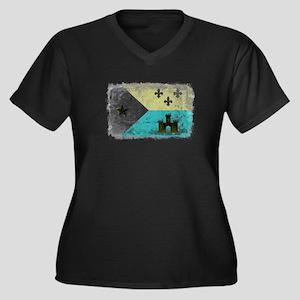 Vintage Grunge Acadian Flag Plus Size T-Shirt