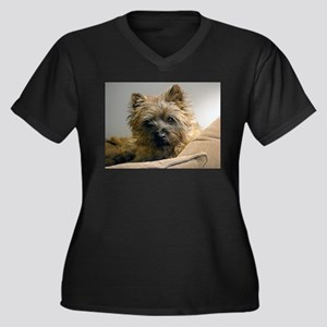 Pensive Cairn Terrier Women's Plus Size V-Neck Dar