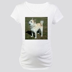 norwegian buhund full Maternity T-Shirt