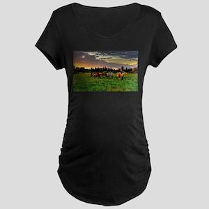 Horses Grazing Maternity T-Shirt