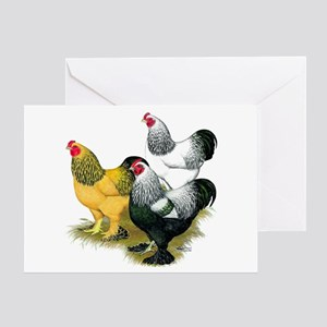 Brahma Rooster Assortment Greeting Card
