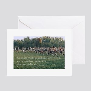 Running a Race Greeting Cards