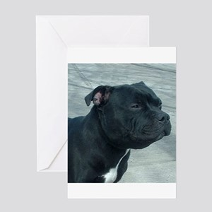 staffordshire bull terrier Greeting Cards