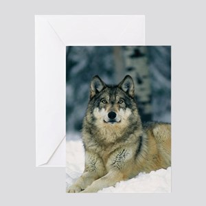 Wolf In The Snow Greeting Cards