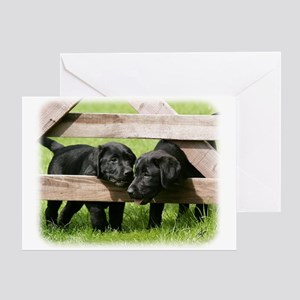 Labrador Pups 9Y415D-168 Greeting Card