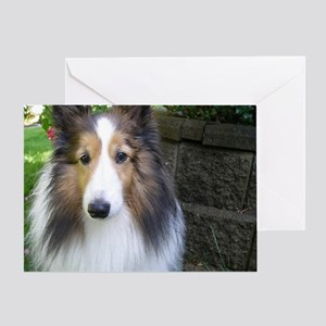 Sheltie love Greeting Card