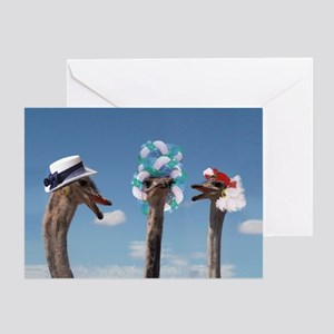 Crazy Hat Day Greeting Cards