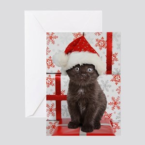 Boxed Cat Christmas Cards.Boxed Cat Christmas Greeting Cards Cafepress
