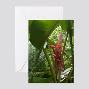 Banana Flower Greeting Card