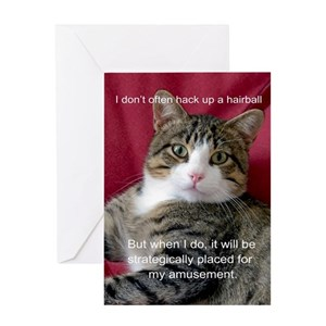 Funny Cat Greeting Cards