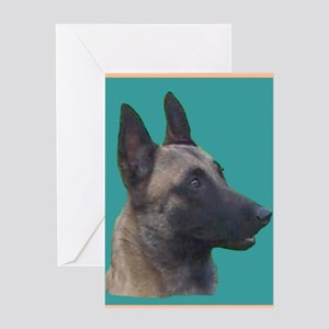 Young Belgian Malinois Greeting Card