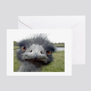 Peek-A-Boo Ostrich Greeting Cards