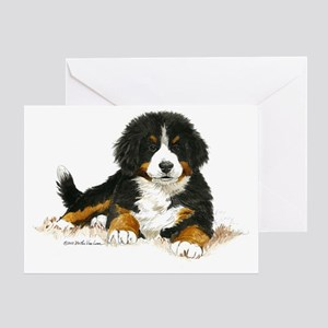 Bernese Mountain Dog Bright Eyes Greeting Card