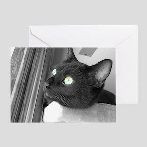 Black Cat Ninja Gifts - CafePress