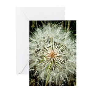 a371923f692 Dandelion Greeting Cards - CafePress