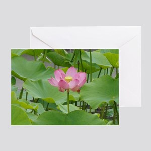 Lotus Flower Greeting Card