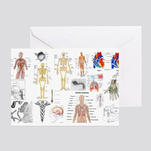 Human Anatomy Charts Greeting Cards