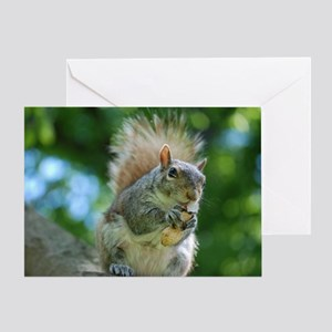 Hungry Little Squirrel Greeting Card