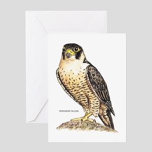 Peregrine Falcon Bird Greeting Card
