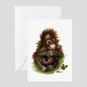 Orangutan Baby And Butterfly Greeting Cards