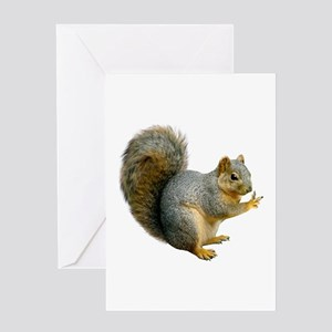Peace Squirrel Greeting Card
