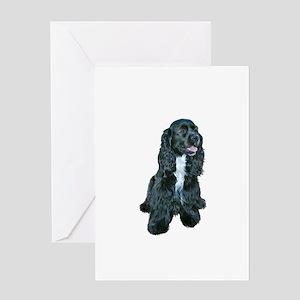 Cocker (black- white bib) Greeting Card