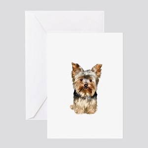 Yorkshire Terrier (#17) Greeting Card
