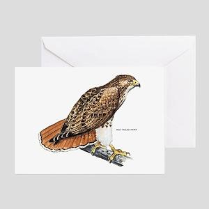 Red-Tailed Hawk Bird Greeting Card