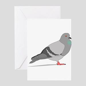 Cartoon Pigeon Greeting Cards