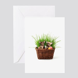 Easter Chihuahua puppies Greeting Cards