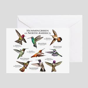 Hummingbirds of North America Greeting Card