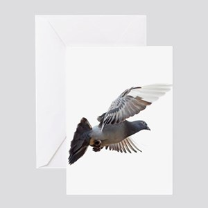 pigeon fly to love joy peace Greeting Cards