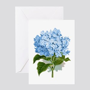 Blue hydrangea flowers Greeting Cards